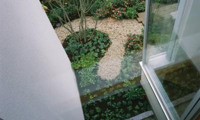 ミッドセンチュリーテイスト 成城にてゆったりと住まう (上階から見下ろした坪庭の様子)