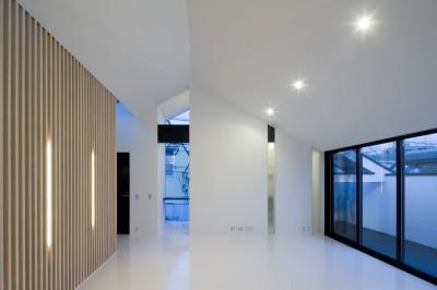 勾配天井のリビング (愛犬と暮らす家 地下室のあるOUCHI-13)