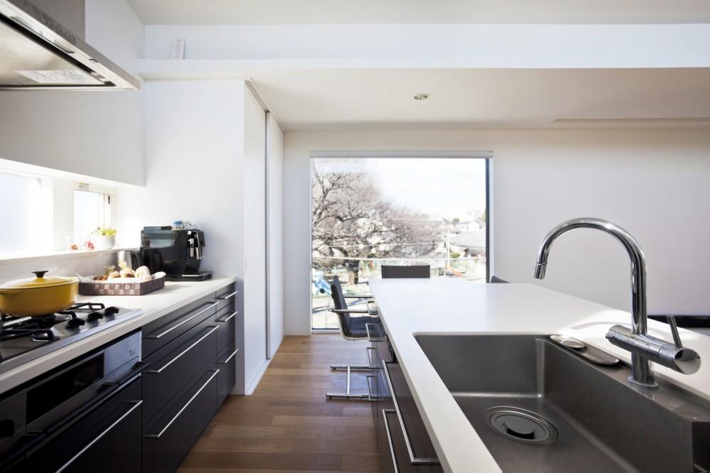 ハコノオウチ05 ルーフバルコニーのある二世帯住宅 (桜の木を借景する大窓)