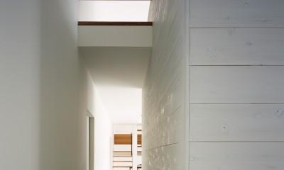東大宮の家-趣味を楽しむためのモダンな住空間 (玄関ホール)