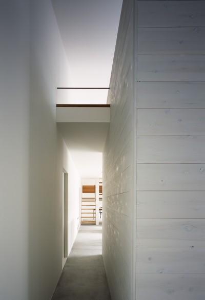 玄関ホール (東大宮の家-趣味を楽しむためのモダンな住空間)