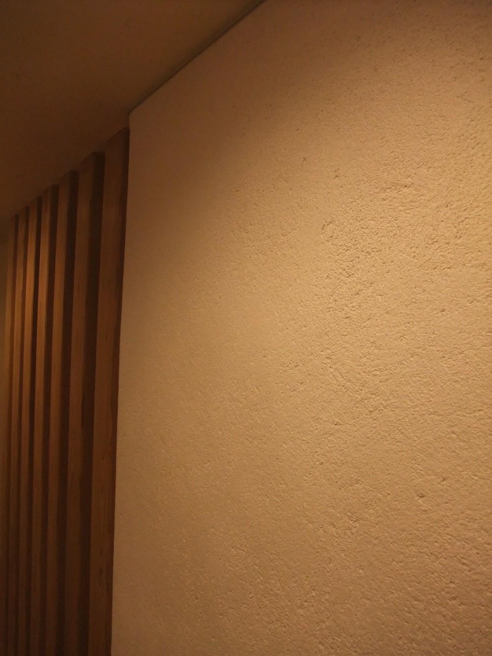 Edelweiss renovation 〜 ふたり暮らしのリノベーション 〜 (左官の表情)
