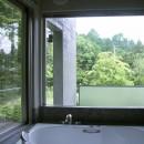 中軽井沢、地窓から裏手の広大な森が目に入る緑に囲まれた住まいの写真 浴室から外を見た様子
