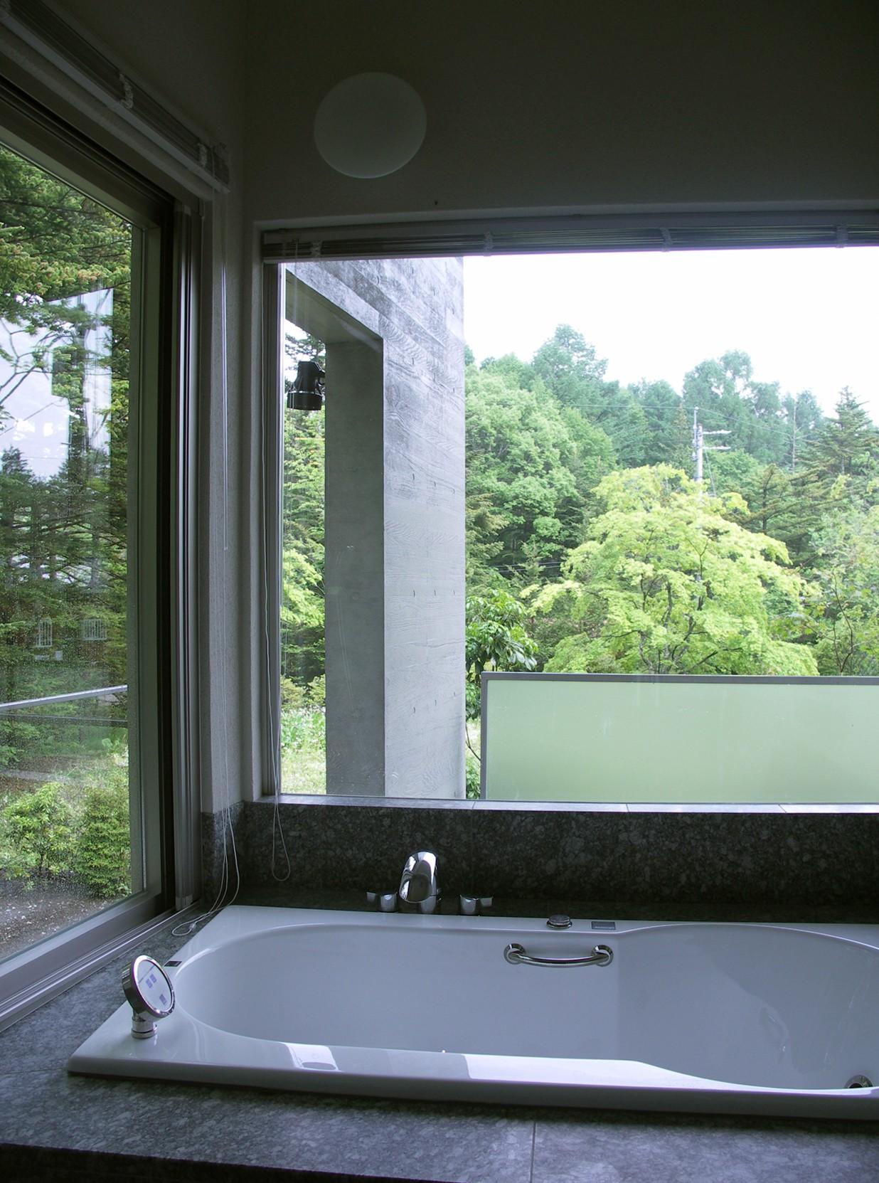 VILLA NAKAKARUIZAWA (浴室から外を見た様子)