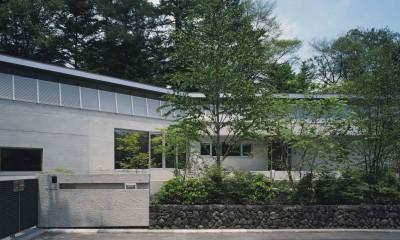 中軽井沢、地窓から裏手の広大な森が目に入る緑に囲まれた住まい (道から正対した建物の様子)