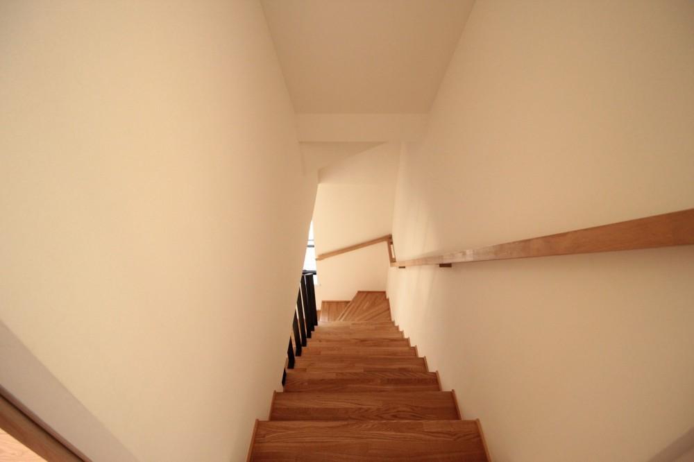 無垢材と色にこだわった家 (階段)