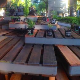 Platform (herbs)