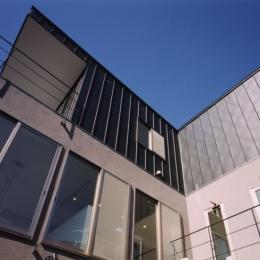 (西東京市)ひばりが丘の木造3階建ての家 (庭からの見上げた外観.3階はガルバリウム鋼板葺き)