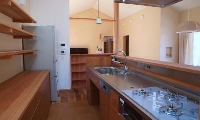 洲本の家 (キッチン)