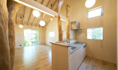 HouseK (キッチン)