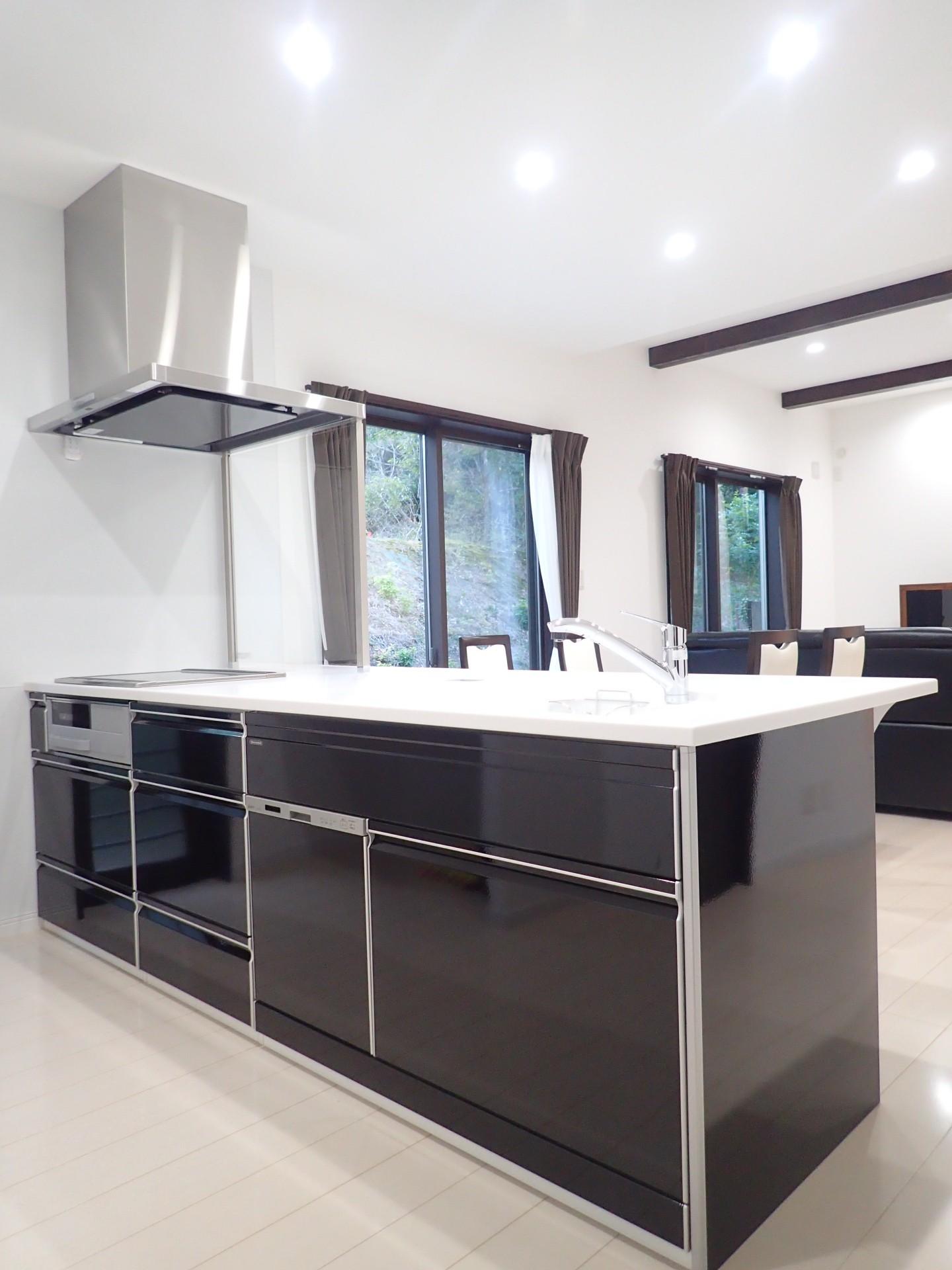 キッチン事例:キッチン(白と黒を基調としたシンプルモダンな家)