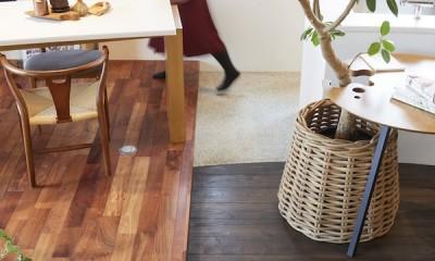 Shan shui house-猫と植物と山水画のような空間に暮らす (リビング)