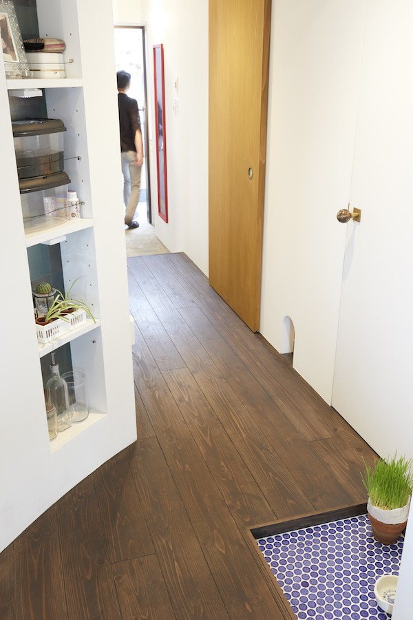 Shan shui house-猫と植物と山水画のような空間に暮らす (玄関)