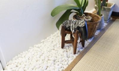 Shan shui house-猫と植物と山水画のような空間に暮らす (壁面収納)