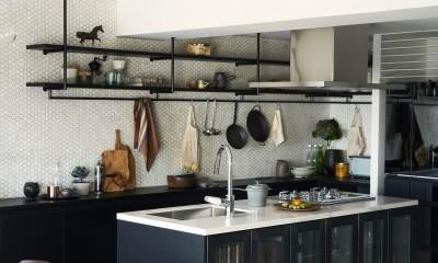 RE : Apartment UNITED ARROWS LTD. CASE001 / PLAN A ~店舗の技術を取り入れた見せる収納~ (ユナイテッドアローズオリジナルキッチン)
