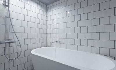 ザ・インダストリアルリノベーション (バスルーム)