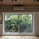 壁孔の家の写真 庭の緑を取り込んだリビングルーム