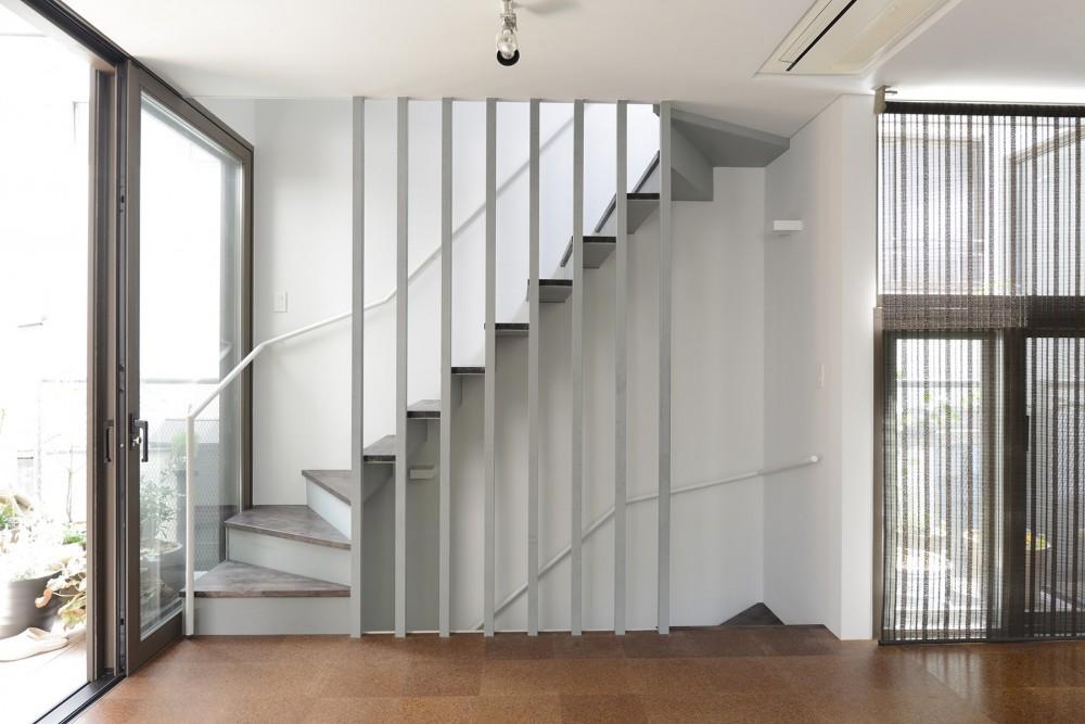 HouseM (階段)