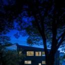 緑豊かな公園に隣接|プライバシーを守りながら開放的に住まう Y字路の家の写真 夜景