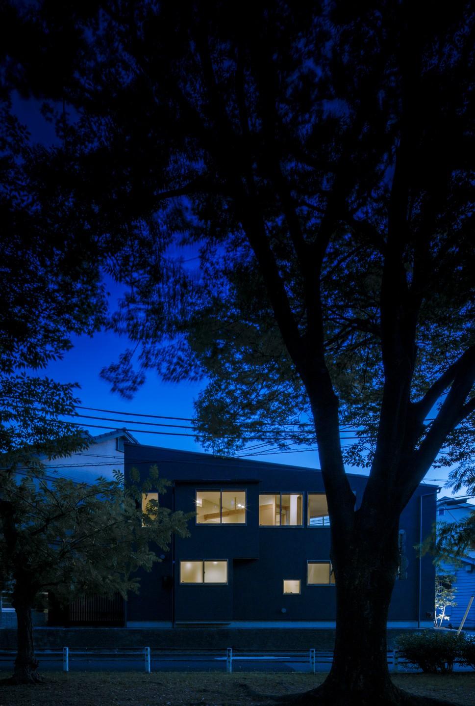 緑豊かな公園に隣接|プライバシーを守りながら開放的に住まう Y字路の家 (夜景)