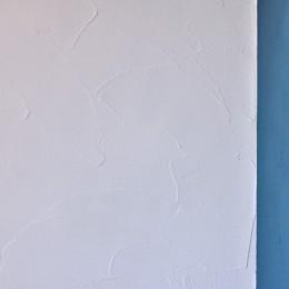 マリンブルー壁×チェリー床。素材に溢れた1LDK+WIC住まい (自然な塗りムラが特徴的な珪藻土の壁・天井)