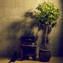 名古屋のアトリエ~マスキング塗装を施した既存コンクリート壁~の写真 アトリエのワンシーン