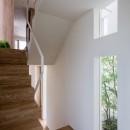 井の頭の家の写真 階段