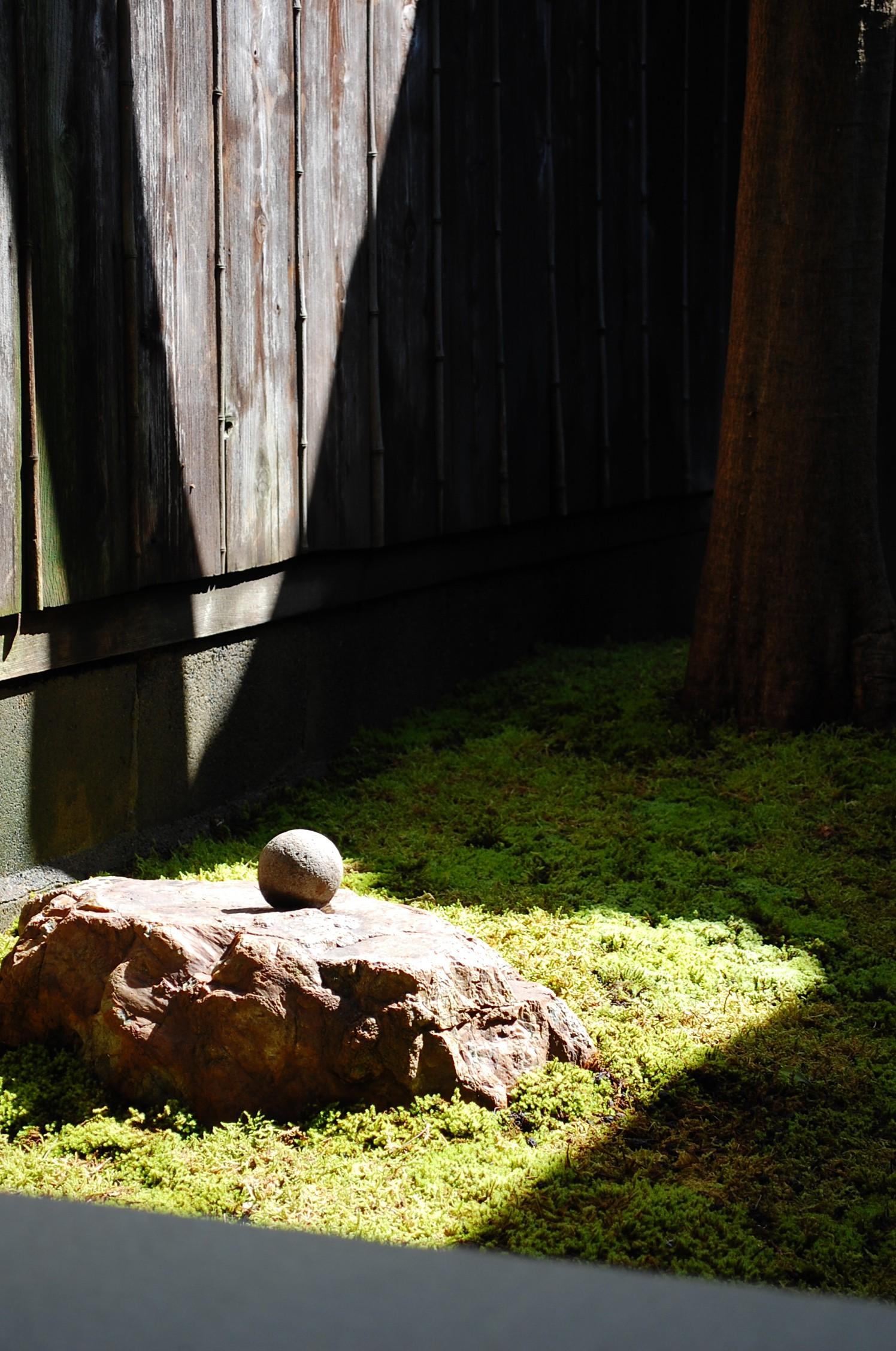 リビングダイニング事例:庭(円居)
