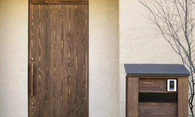 ゼロエネの木の家 (玄関アプローチ)