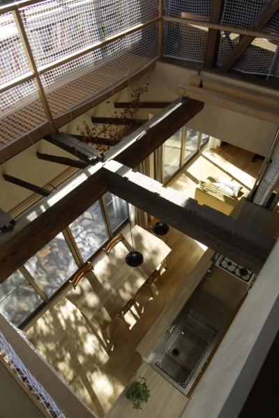 築40年 木造戸建住宅のフルリノベーション (吹抜け)
