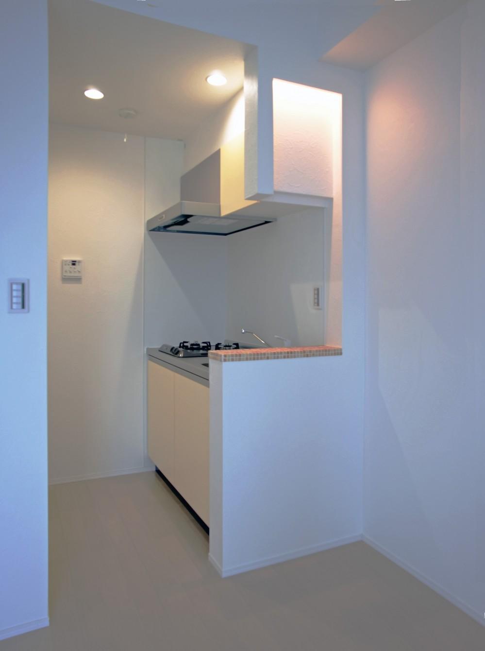 デザイナーズ集合住宅・共同住宅 (デザイナーズキッチン+間接照明+カウンターにモザイクタイル)