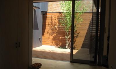 M邸ー終の住処として二つの庭を持つコートハウス (玄関ホールから中庭テラスをみる)