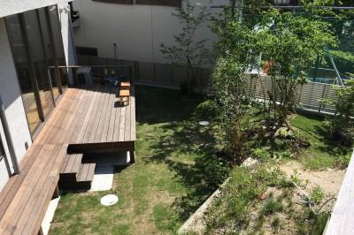 飯倉の家 (ウッドデッキと庭)