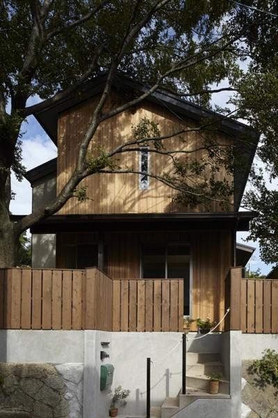 40年間、土地に育った大きな木と一緒に : 大樹のある山荘 (外観)