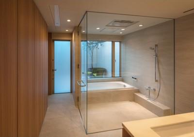 芦屋の家 洗面・浴室 (芦屋の家)