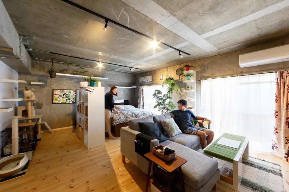広々としたワンフロア空間 (猫と暮らす無垢フローリングの家)