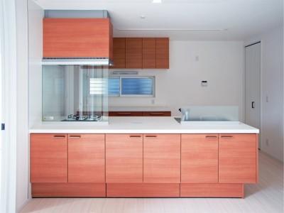 都内郊外型、1種低層の重厚な家 (足元クビレの高品位キッチン)