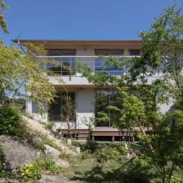 飯倉の家 (南側外観)