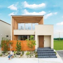鉄骨階段があるやさしい木の家 (木をふんだんにつかった四角い家)
