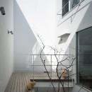帝塚山の家の写真 テラス2