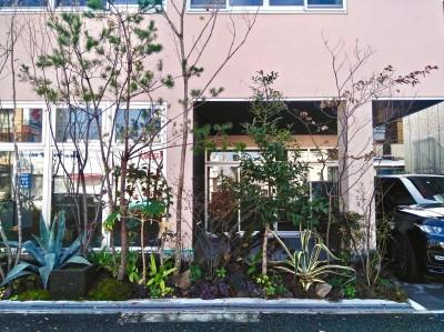 尼崎のデザイン事務所:鉄骨造3階建て新築 大阪の設計事務所 (外観)