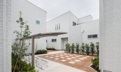 中庭の緑:緑に癒される家|緑に癒される家