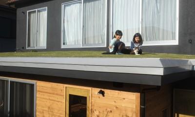草屋根の家 (草屋根)