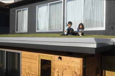 草屋根 (草屋根の家)