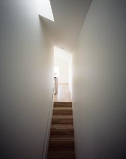 吉田町の家 (階段)