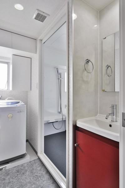 1畳半の機能性洗面室 (ホワイトスタジオ~ペットと趣味に優しいおうち~)