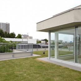 高輪台の家、こだわりの施主と作り上げたバーカウンターのある大型住まい (屋上芝生のあるルーフガーデン)