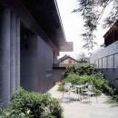 蒲郡 海辺市街地の別荘の写真 中庭から玄関キャノピー方向を見る