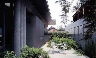 蒲郡 海辺市街地の別荘 (中庭から玄関キャノピー方向を見る)