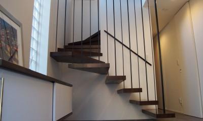 港区の家~ルーフテラスのある都心3階建~ (玄関)